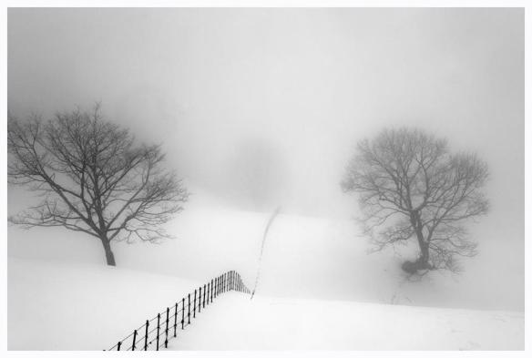 Photography by Hwang Moon-sung